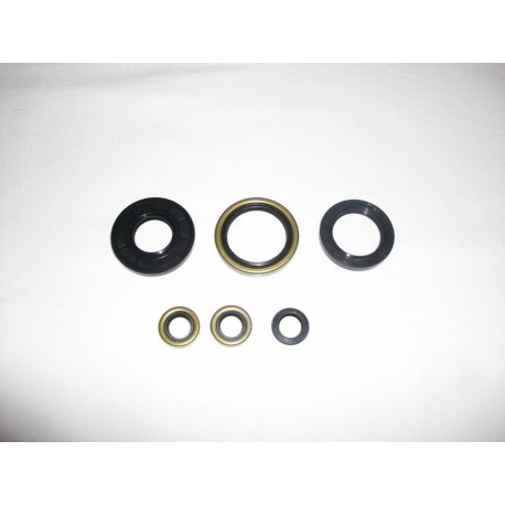 André Horvath's - enduroklassiker.at - Gaskets and Seals - engine seal ring kit