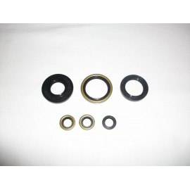 André Horvath's - enduroklassiker.at - KTM 250 GL Krad Military Engine Parts - engine seal ring kit
