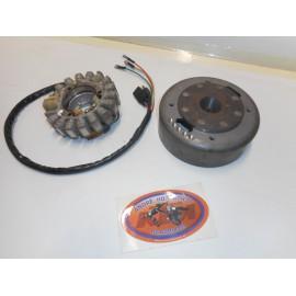 Zündung Rotax KTM