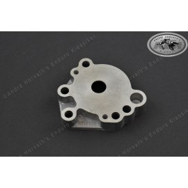 Oil Pump Cover 212580