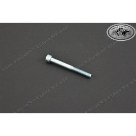 allen head screw M6x75