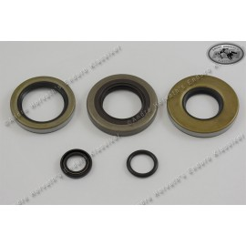 engine seal ring kit KTM 350/390/420/495 79-84