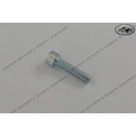 allen head screw M8x30