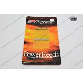 Boyesen reed valve kit KTM 250/300/360/380 1981-98