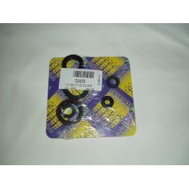 Oil Seal Ring Kits